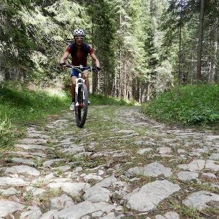 Alle sorgenti del Piave ( La Val Sesis )