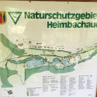 Heimbachaue