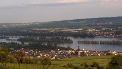 Blick über Rüdesheim