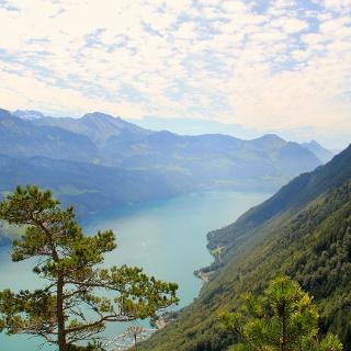 Blick über den Vierwaldstättersee Richtung Beckenried