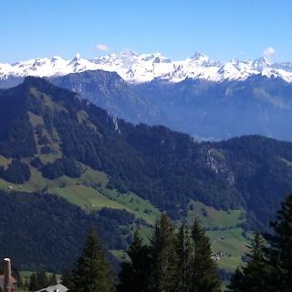 Blick von der Rigi Scheidegg auf die Alpen