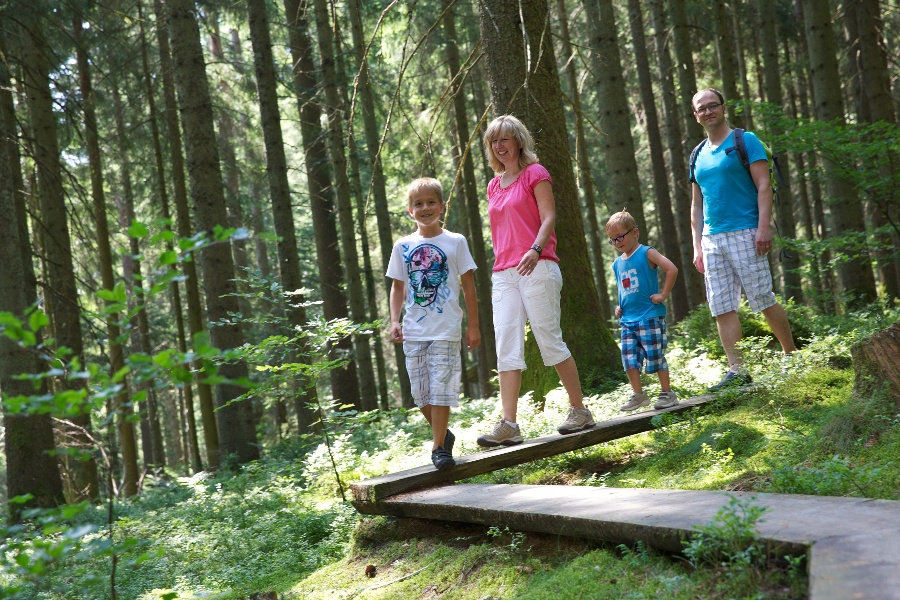 Baiersbronner Erlebnispfad 9 - Holzweg