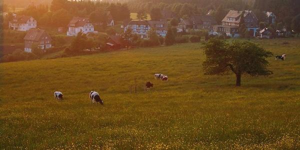 Höhendorf Schanze im Schmallenberger Sauerland