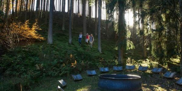 Der Hexenplatz am WaldSkulpturenWeg bei Almert