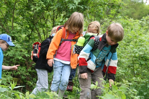 Kinder- Erlebniswanderweg Drumecke