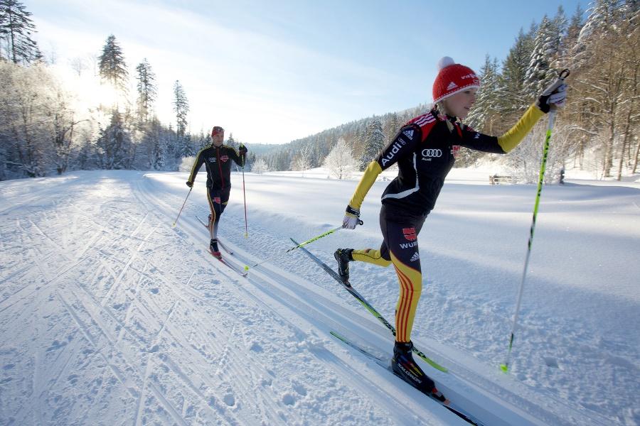 Kniebis Anbindung-Skifernwanderweg bis Seibelseckle