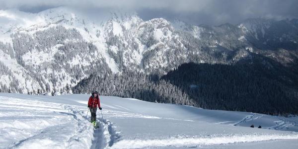 Aufstieg zur Scheinbergspitze
