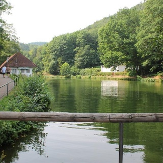 Bärenlochweiher Kindsbach (3)