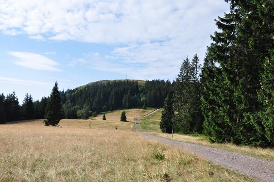 Gipfeltrail Hochschwarzwald - Westschleife