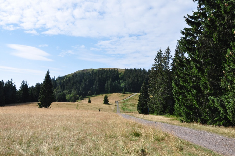 Gipfeltrail Hochschwarzwald - Gipfelstürmer