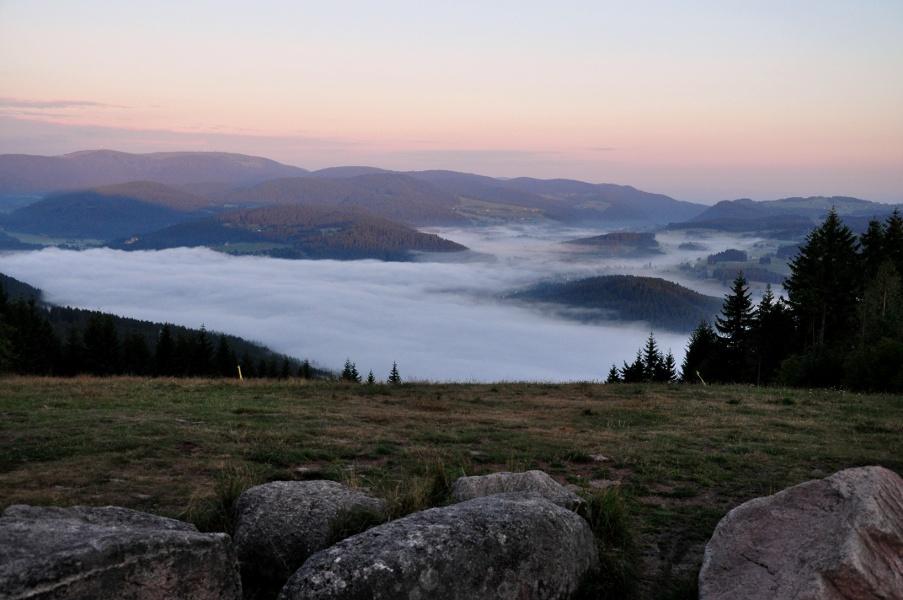 Gipfeltrail Hochschwarzwald - Waldfeger
