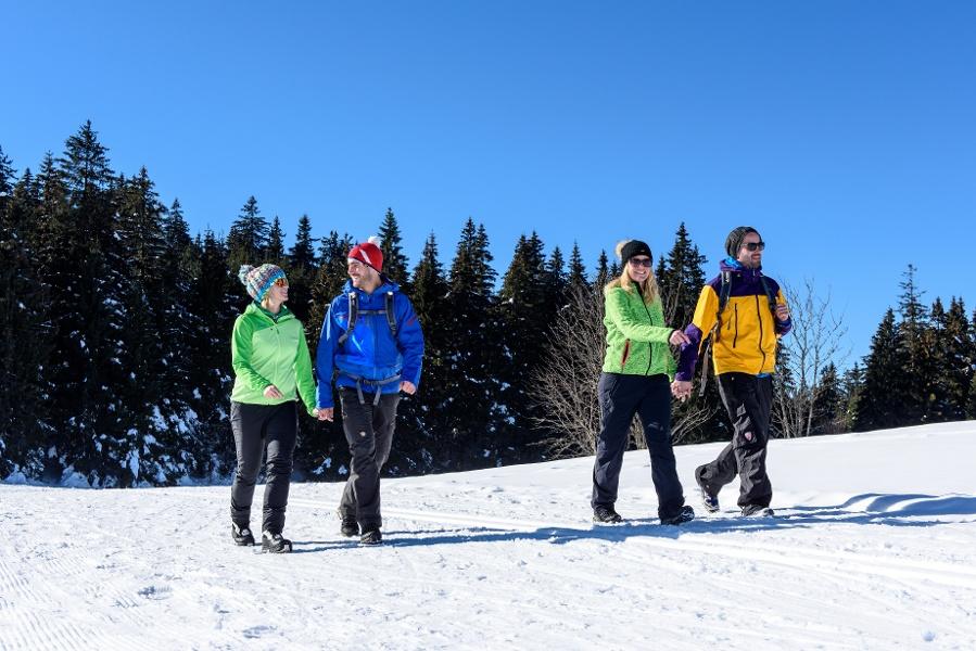 Schonach Tour 2 - Panoramaweg Rund um Schonach