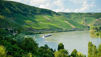 Am Romantischen Rhein