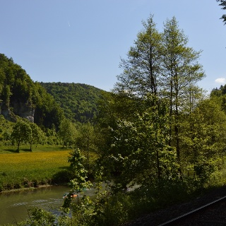 Wald, Wasser, Wiesen ~ Wiesenttal