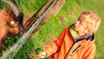 Los geht's - Radrundtour Bauernhofsafari