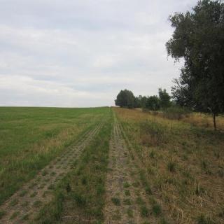 Kolonnenweg (Aug. 2015)