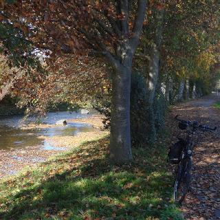Radweg entlang der Hönne. Im Hintergrund Fröndenberg