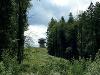 Graber Limesturm  - @ Autor: Beate Philipp  - © Quelle: Naturpark Schwäbisch-Fränkischer Wald