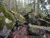 Felsenmeer   - @ Autor: Beate Philipp  - © Quelle: Naturpark Schwäbisch-Fränkischer Wald