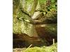 Idyllische Straße Tour M - Wilde Schluchten - luftige Höhen  - @ Autor: Beate Philipp  - © Quelle: Naturpark Schwäbisch-Fränkischer Wald