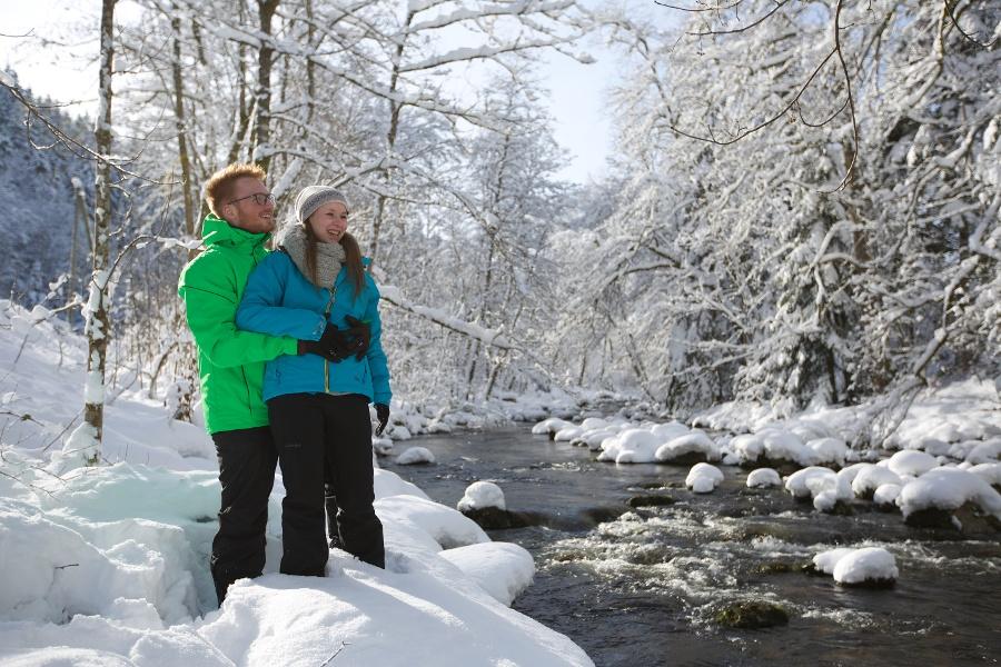 Winterwanderung Hinterlangenbach-Seibelseckle