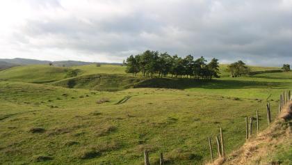 Landschaft um Brösarp