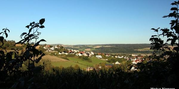 Weserhoehen_Springbachtal_Blick_ueber_Beverungen-001