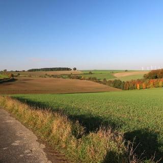 Weserhöhen_die _Bosseborner_Höhen_voraus
