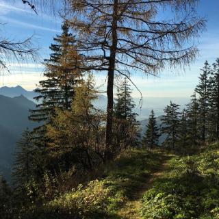 Ausblick Jagdhütte