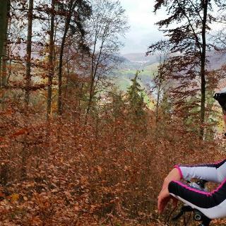 Blick ins Naabtal runter bei Pielenhofen