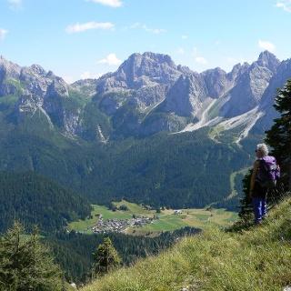 Nella parte alta del sentiero naturalistico monte della Piana con bel panorama su Cima Sappada e sul gruppo Siera-Creta Forata- Cimon
