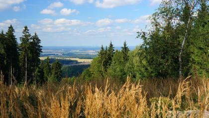 Blick vom Steinberg auf die Lausitz
