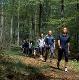 Nordic Walking (Foto: Andrea Spannowsky, Quelle: Pfalz Touristik e.V.)