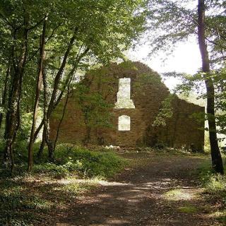 Ruine Karlsburg