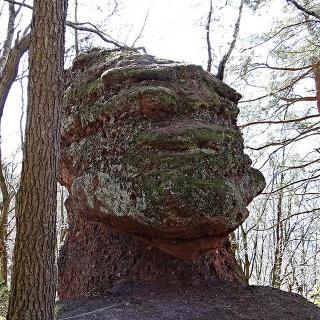 Buntsandsteinfelsen mit Gesicht