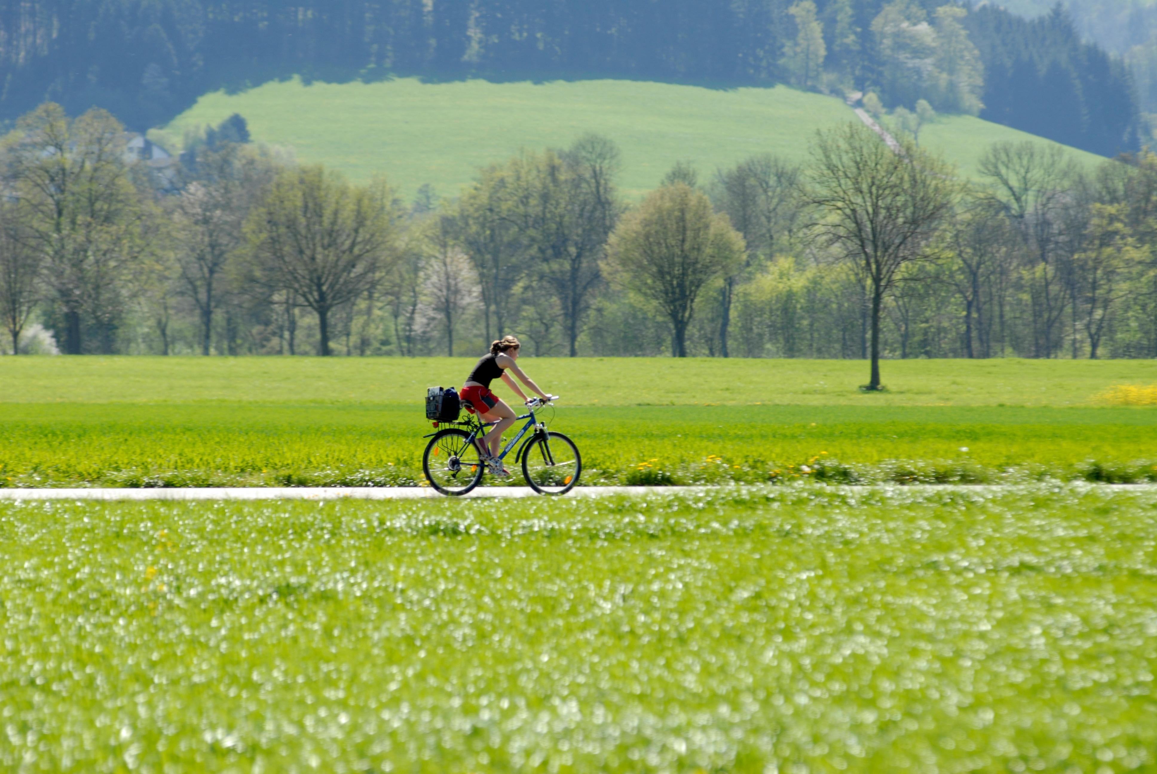 auf dem Weg in Richtung Freiburg