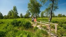 Partnerweg des Eifelsteigs - Struffeltroute