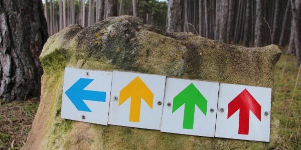 Laufstrecke Föhrenwald Orientierungspfeile