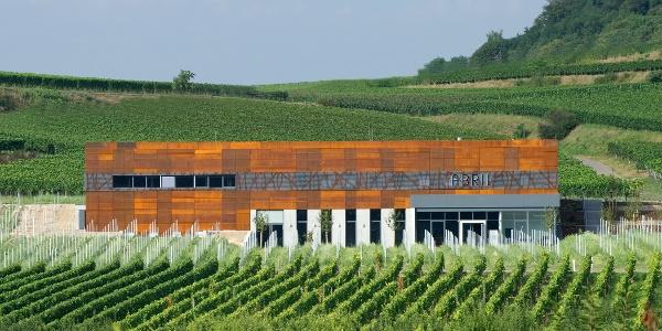 Unterwegs locken interessante und lohnenswerte Stopps, wie etwa zum Thema Wein & Architektur