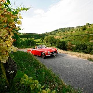 Einfach schön und entspannend - eine Tour auf der Badischen Weinstraße
