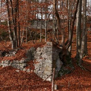 Die Burgruine Federaun