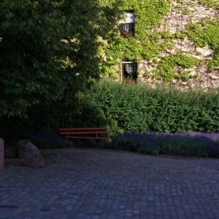 Hieronymus bock Gedenkstein, Hornbach