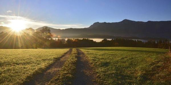 Wanderung - Guglhör-Rundweg - Morgenstimmung