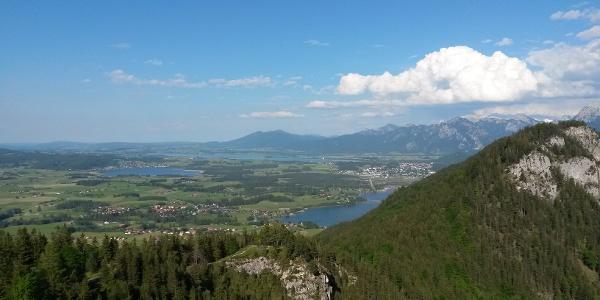 Blick vom Falkenstein Richtung Hopfensee, Forggensee und Weißensee