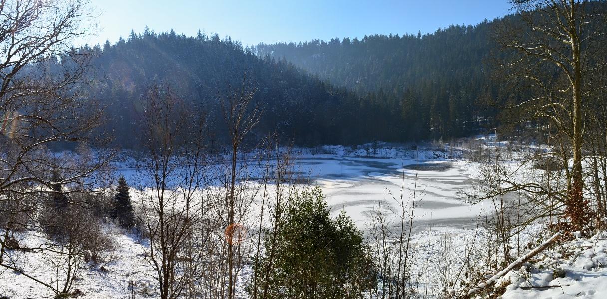 Winterwanderung - Tour ins Sankenbachtal