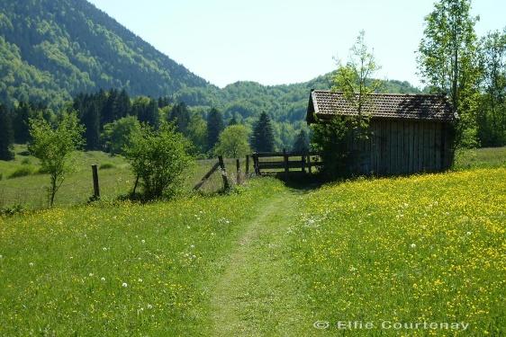 Fernwanderweg - Meditationsweg, 5. Etappe (Ohlstadt - Eschenlohe)