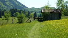 Long-distance hiking trail - Meditation Trail, 5th stage (Ohlstadt - Eschenlohe)