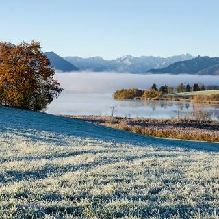 Wanderung - Höhlmühle-Rundweg - Blick auf den Riegsee