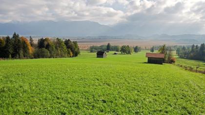 Radtour - Staffelsee-Murnauer Moos - Blick auf das Murnauer Moos