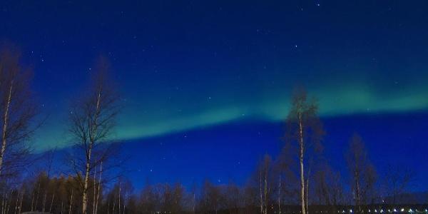 Nordpolarlichter über Rovaniemi